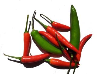 chili peper 2